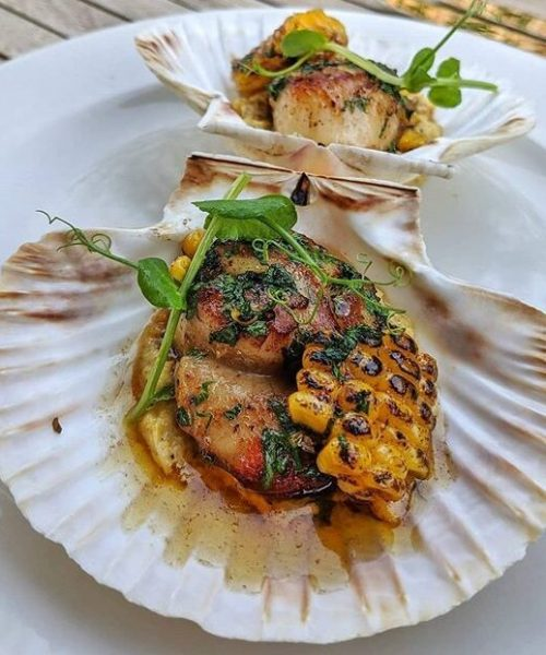 restaurant-to-trek-to-the-drumming-snipe-brixham-king-scallops